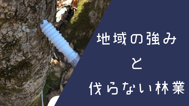 【樹液ビジネス】伐らない林業とは何か。地域の強みを活かした秩父の取り組み。