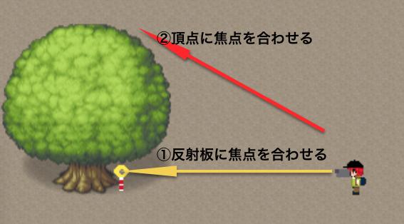 毎木調査2