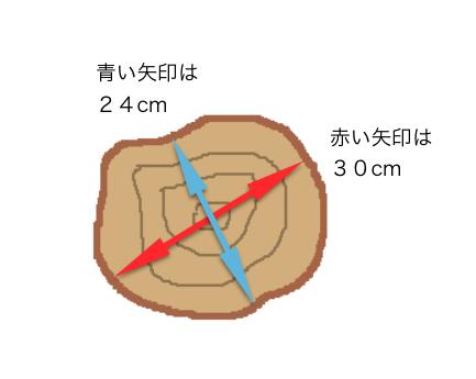 丸太説明2