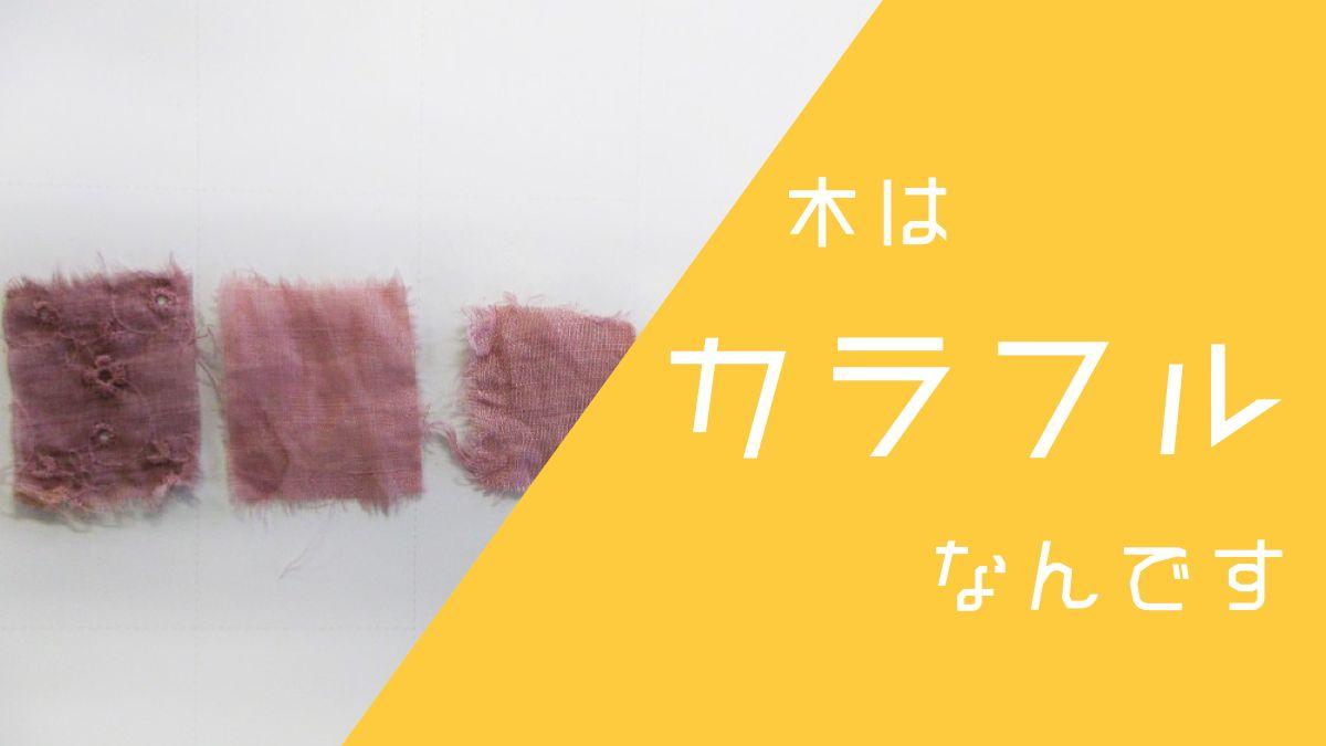 【草木染め】 ピンクや黄色も。木がカラフルだって知ってました?