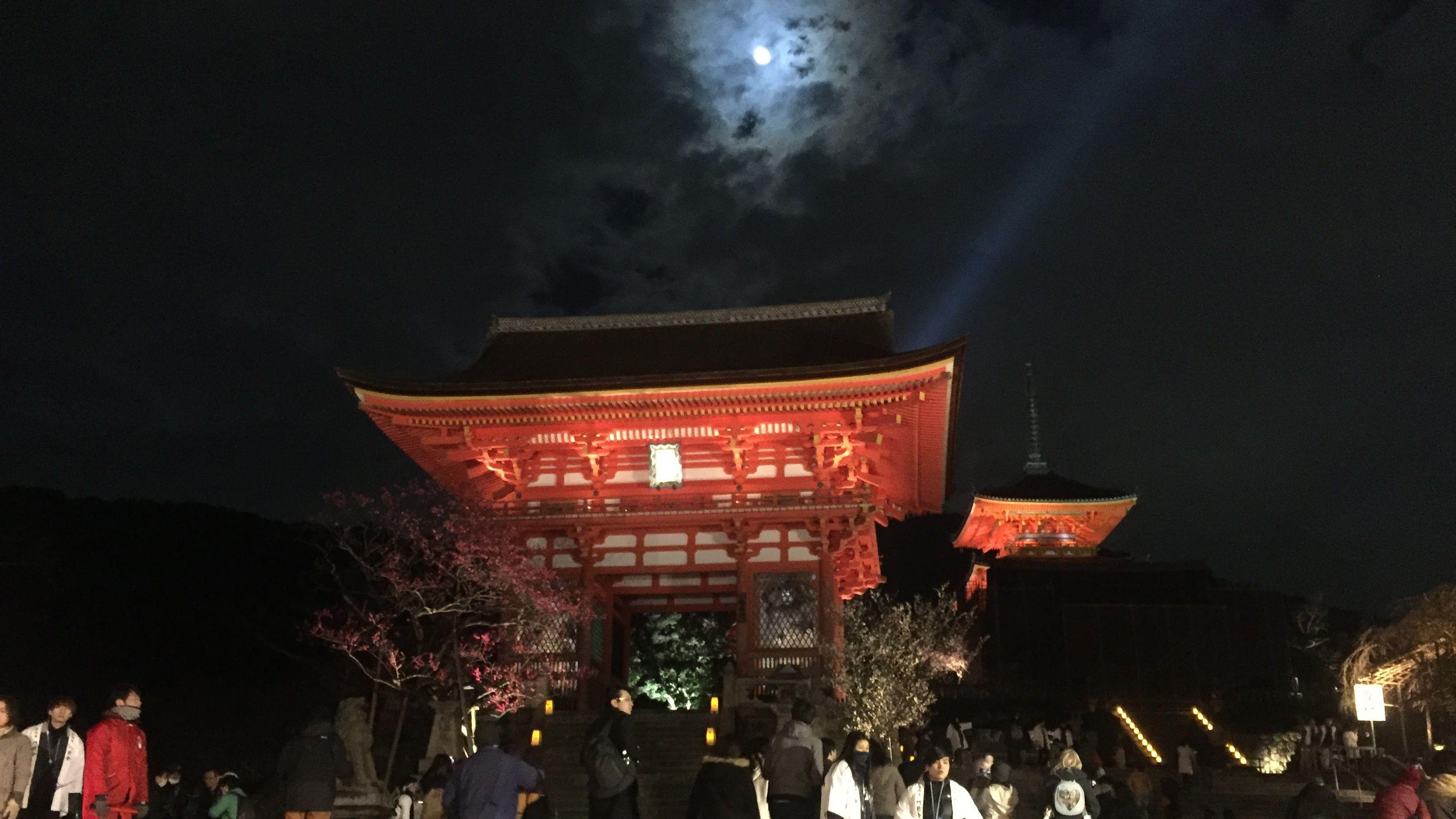 【夜の特別拝観】ライトアップされた清水寺は幻想的な空間だった。