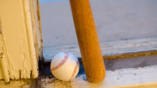 少しの違いがプロ野球の歴史をつくる。王貞治やイチローのバットからみる木の奥深さ。