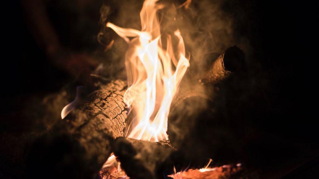薪は用途によって使い分けよう。広葉樹・針葉樹それぞれの特徴をご紹介。