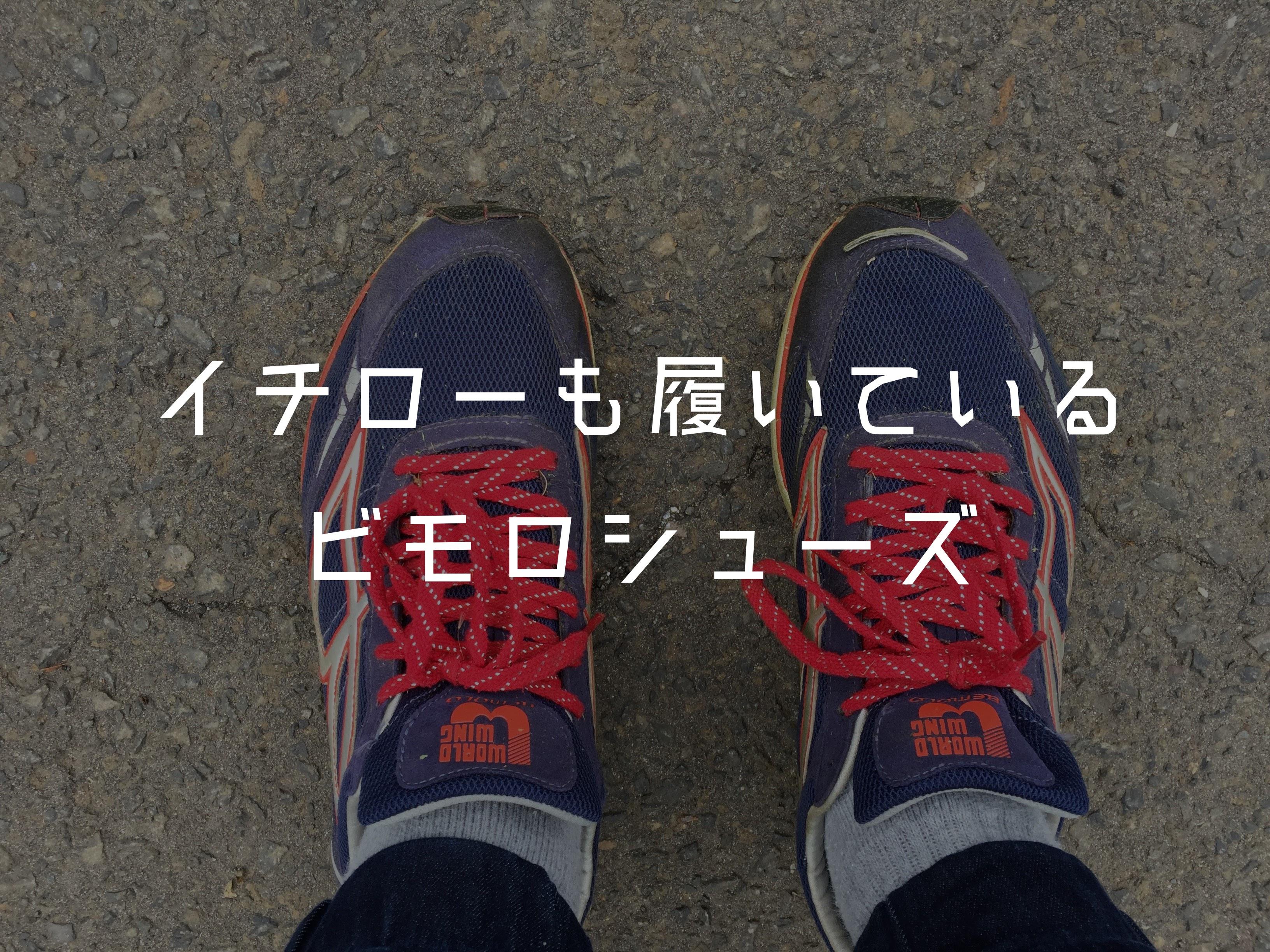【愛用中】イチローも愛用するビモロシューズは今までで一番歩きやすい靴だった。