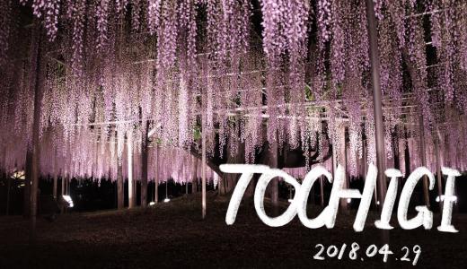 栃木県を一日で満喫!GW観光モデルコース。神秘と歴史と花を巡る旅。